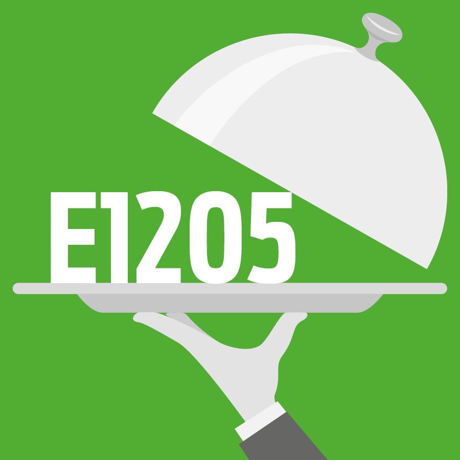 E1205 Copolymère méthacrylate basique -