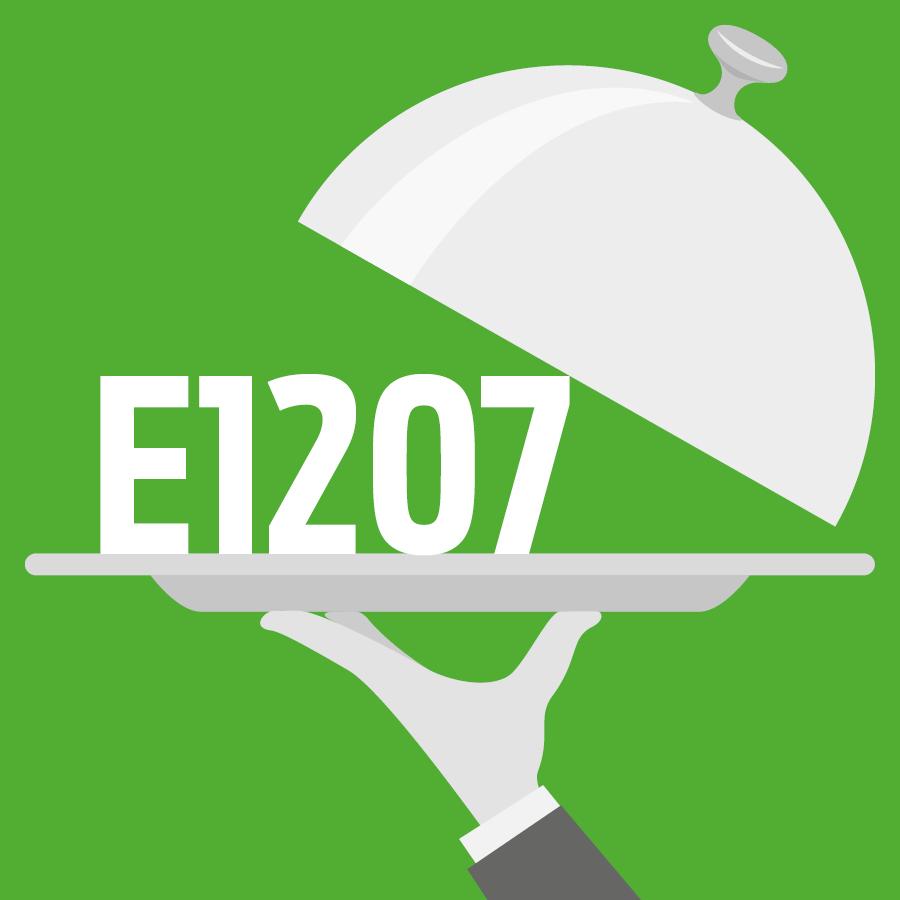 E1207 Copolymère méthacrylate anionique -