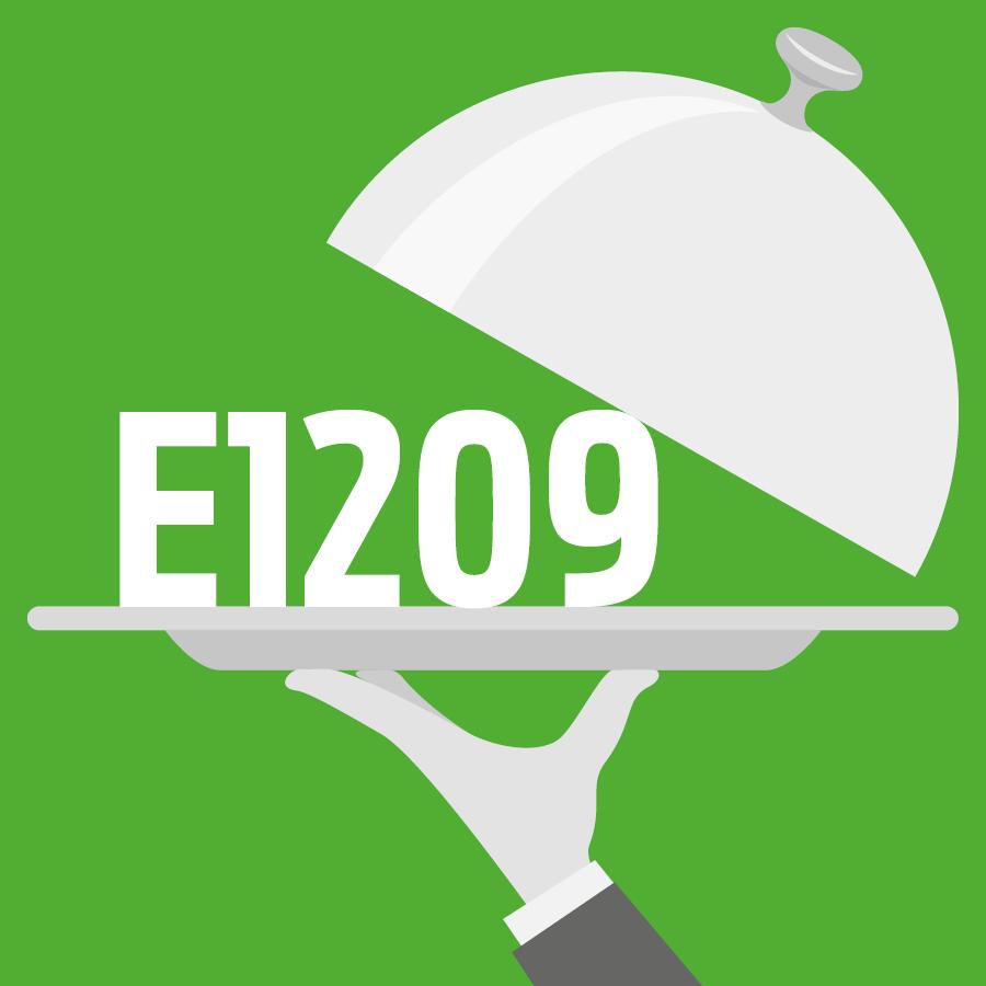 E1209 Copolymère greffé d'alcool polyvinylique et de polyéthylèneglycol -