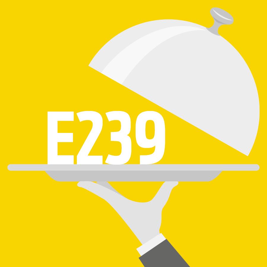 E239 Héxaméthylène tétramine, Héxamine, Urotropine, HMT -