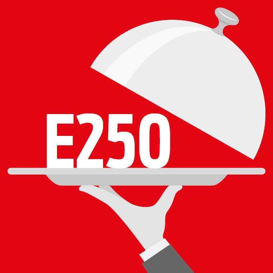 E250 Nitrite de sodium -