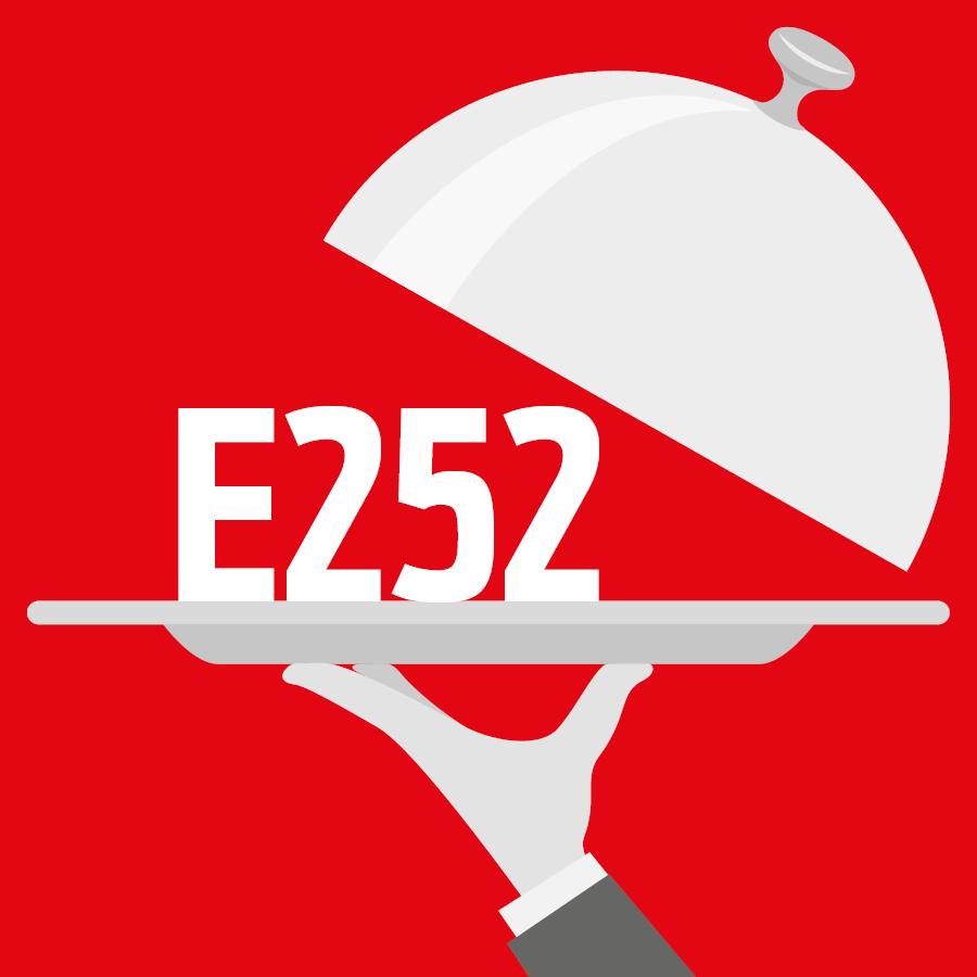 E252 Nitrate de potassium -