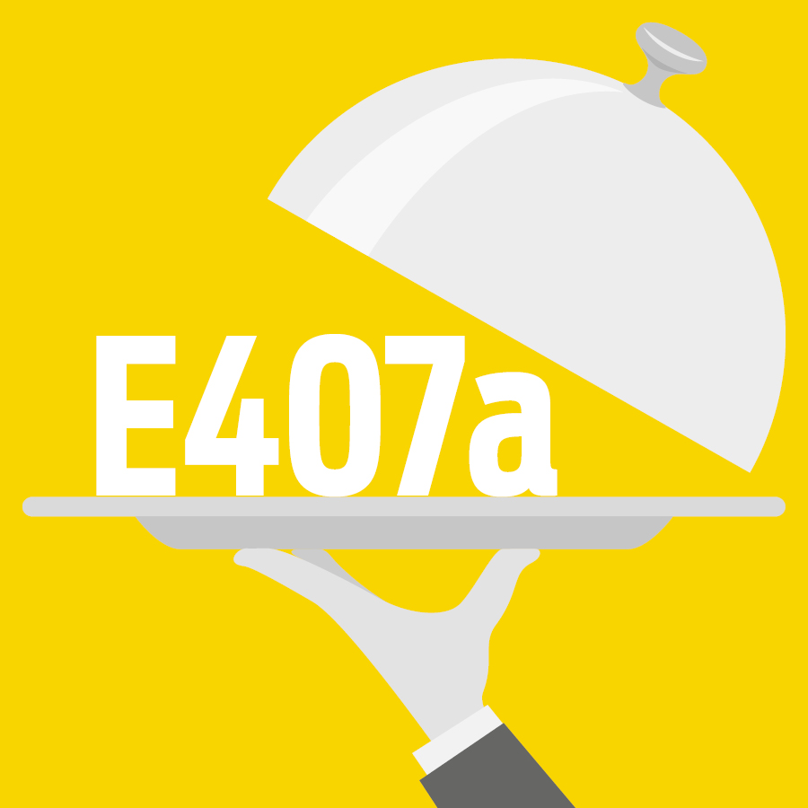 E407a Carraghénane semi-raffiné, Algue Eucheuma transformée, PES -