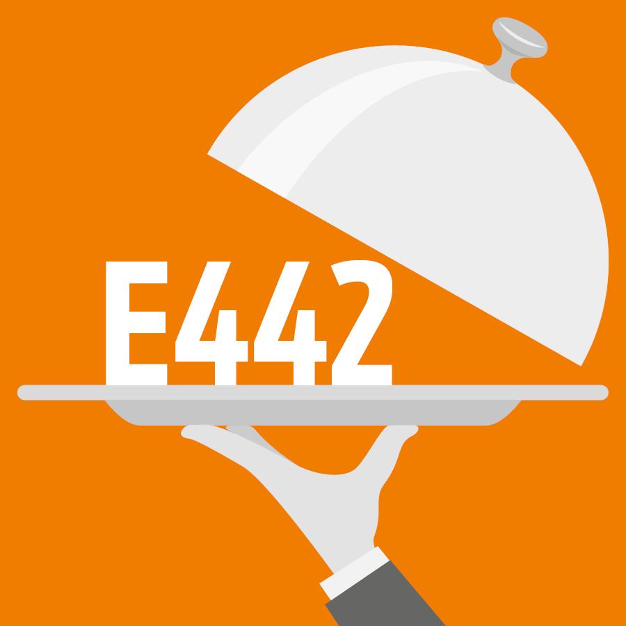 E442 Phosphatides d'ammonium, Sels d'ammonium de l'acide phosphatidique -