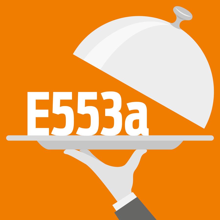 E553a Silicate de magnésium -