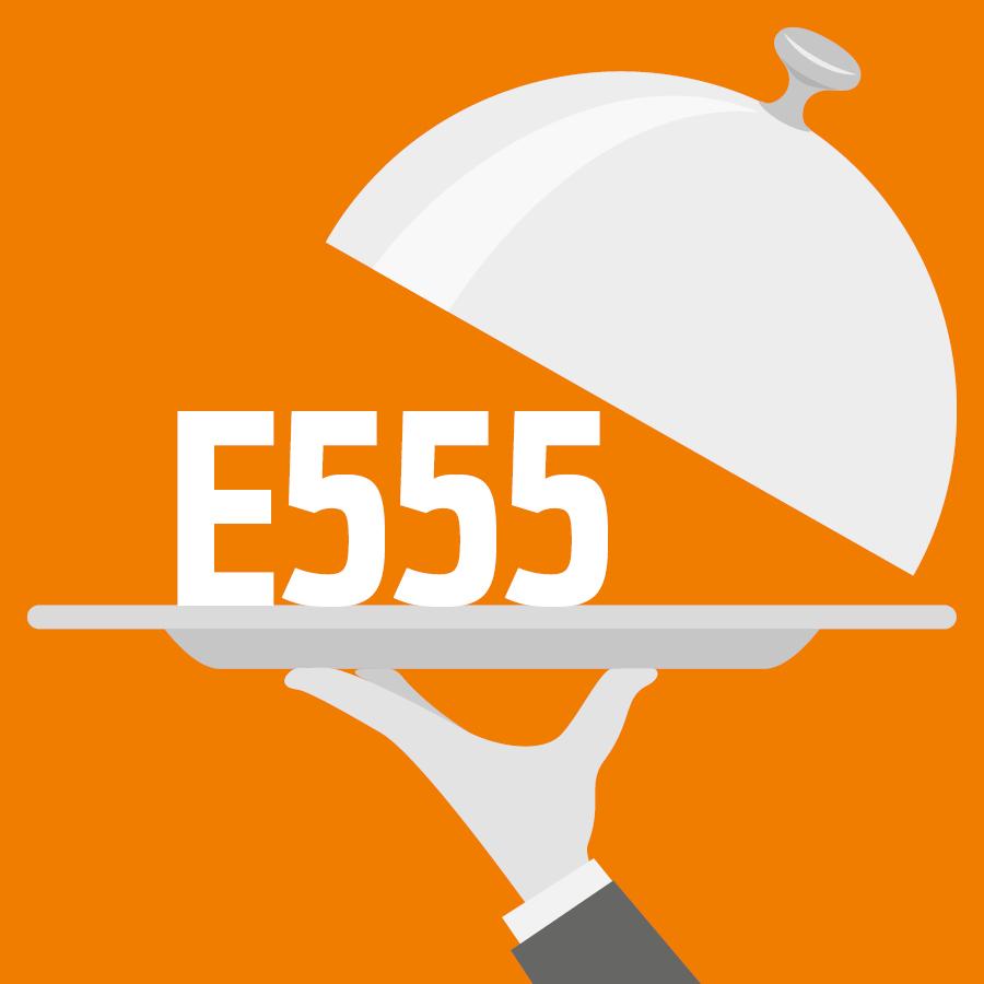 E555 Silicate alumino-potassique -