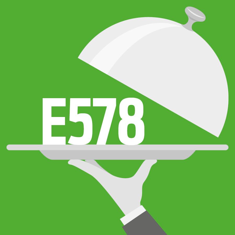 E578 Gluconate de calcium -