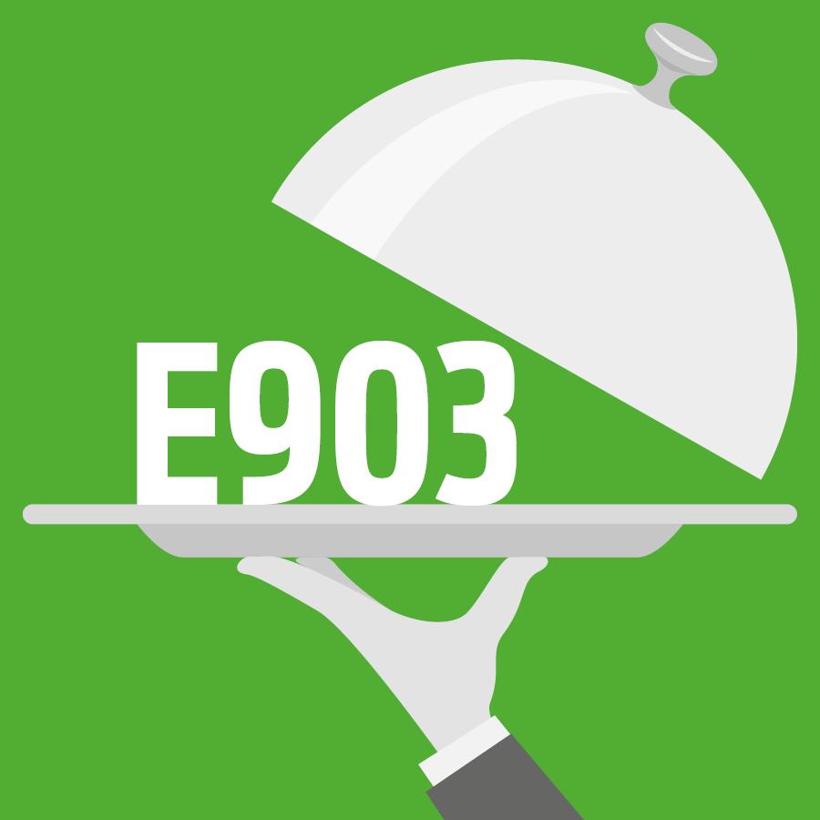 E903 Cire de carnauba -