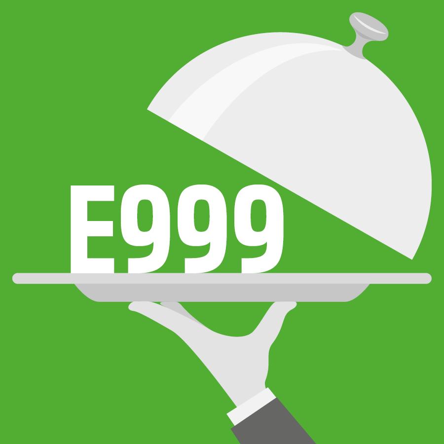 E999 Extraits de quillaia (type I et II) -