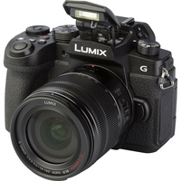 Panasonic Lumix DC-G90 + Lumix G Vario 14-140 mm Power OIS