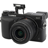 Panasonic Lumix DMC-GX7 + Lumix G Vario 14-42 mm II