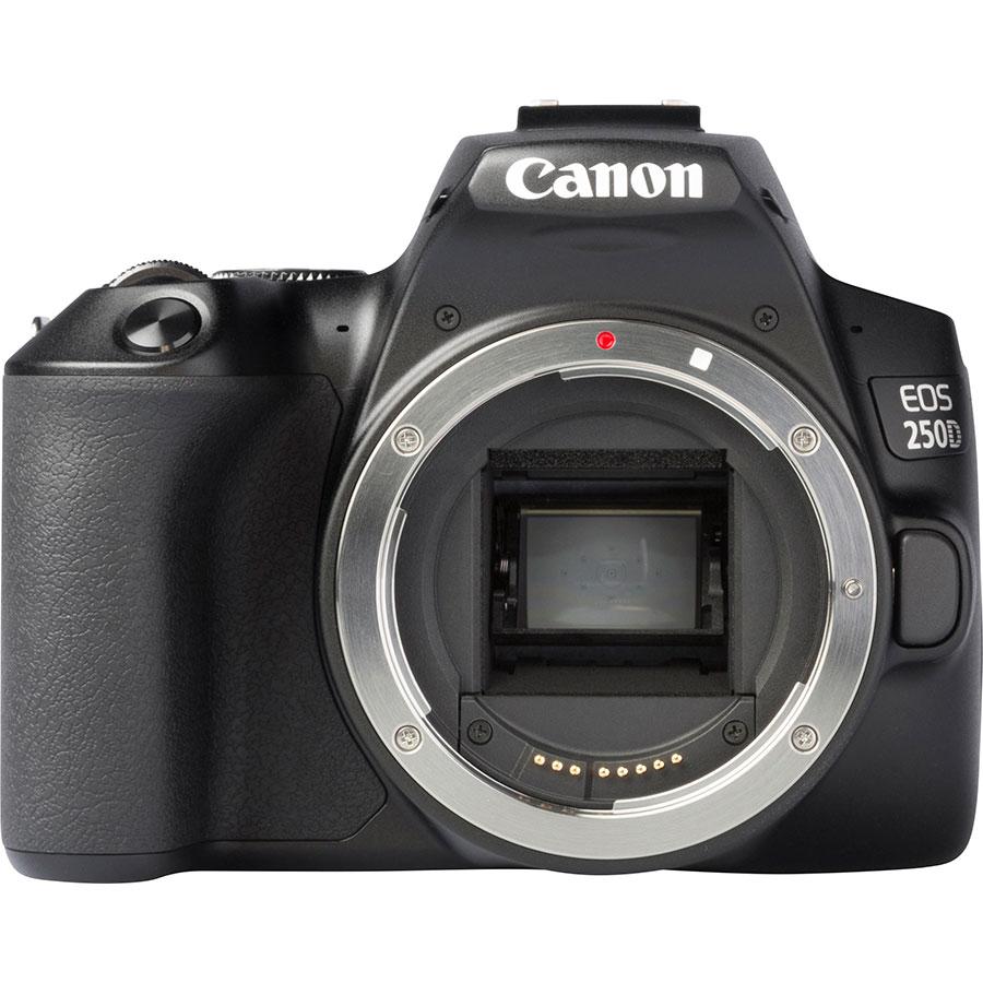 Canon EOS 250D + EF-S 18-135 mm IS STM - Vue de face sans objectif