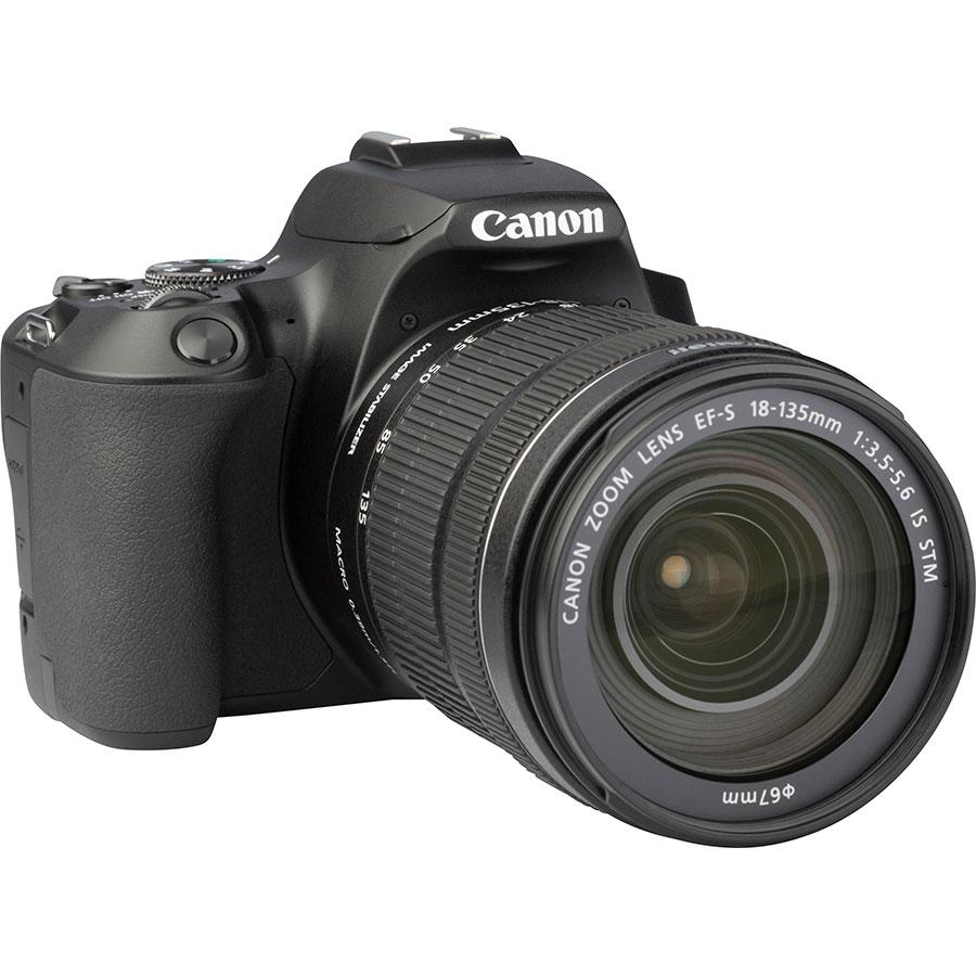 Canon EOS 250D + EF-S 18-135 mm IS STM - Vue de 3/4 vers la droite