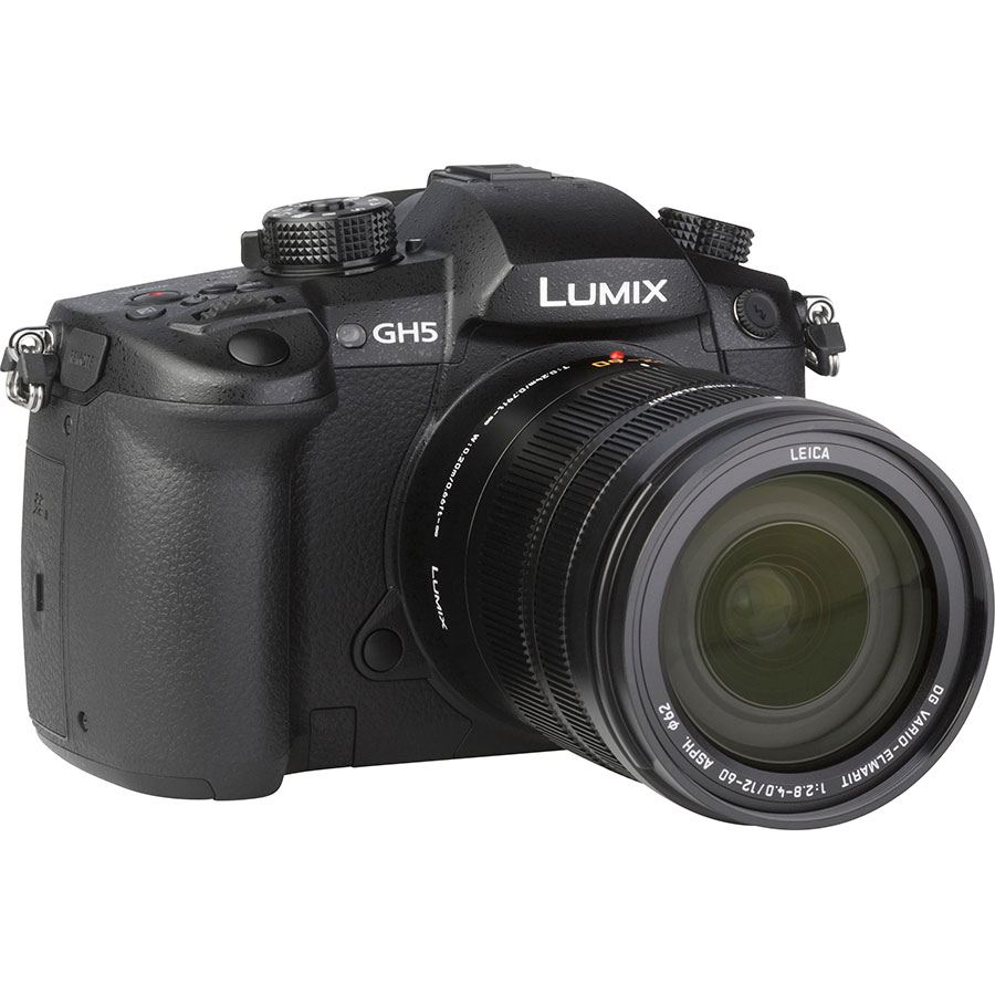 Panasonic Lumix DC-GH5 + Leica DG Vario-Elmarit 12-60 mm Power OIS - Vue de 3/4 vers la droite