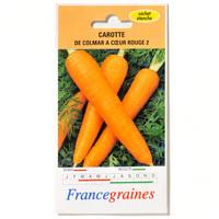 France graines Carotte