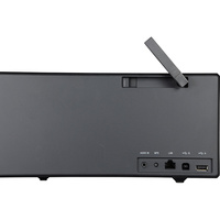 Sony SRS-X99 - Connectique
