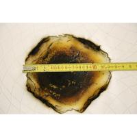 Epeda Coruscant - Résultat du test d'inflammabilité avec une allumette