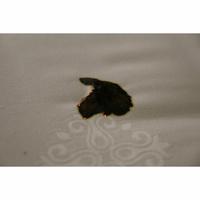 La Compagnie du lit Confort Ensachés - Résultat du test d'inflammabilité avec une allumette