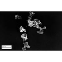 Casino Soupe Poule au pot (déshydratée) - Exemple d'observation au microscope électronique à balayage