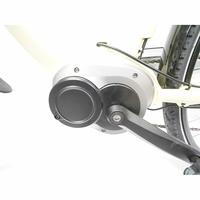 Wayscral Everyway E300 28'' - Moteur dans le pédalier (le fabricant annonce un couple impressionnant de 90 Nm).